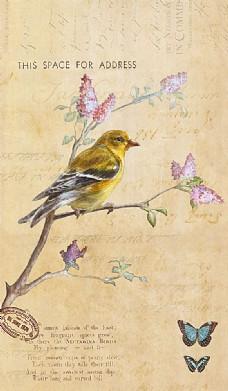 小鸟花卉蝴蝶油画