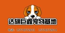宠物店名片图片