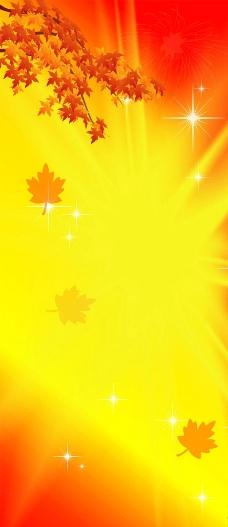 红色金黄枫叶背景素材图片