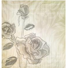 手绘玫瑰 淡雅玫瑰图片
