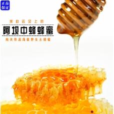 土蜂蜜阿坝中蜂蜂蜜阿里淘宝首图高清