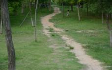 山中泥土路图片