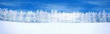 冬季雪树主题全屏背景素材 (12)