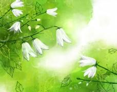 唯美绿色鲜花海报背景