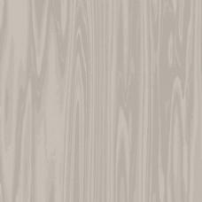 浅木设计的纹理背景
