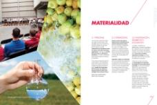 水果画册设计图片