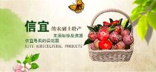 天天信宜农产品土特产banner