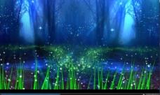 幽静森林幻影星光视频