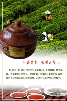 印度  大吉岭  红茶