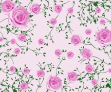 玫瑰藤蔓背景墙