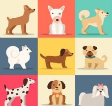 矢量可爱狗品种集