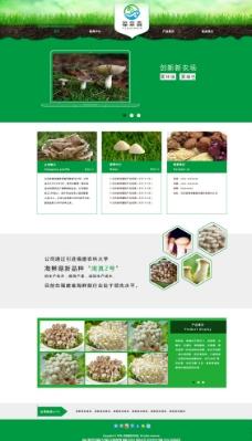 食用菌类网站飞机稿图片