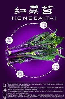 红菜苔图片