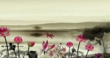 水墨荷花竹子中国风视频素材