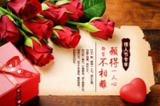 七夕情人节玫瑰花爱情爱心
