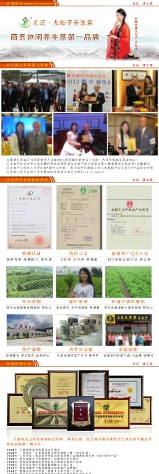 企业简介设计模板养生茶企业设计尤仙子模板