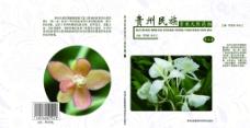 贵州民族常用天然药物封面封底