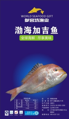 渤海加吉鱼图片
