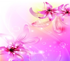 浪漫花朵图片