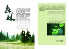 森林画册内页psd免费下载