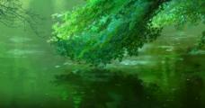 言叶之庭 绿意图片