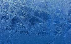 雪片霜花背景图片