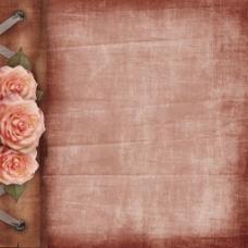玫瑰花复古背景