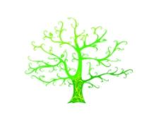 矢量树  线条树  剪影树图片