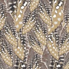个性民族风羽毛动物皮毛花纹图片