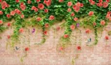 砖墙玫瑰(不分层)图片