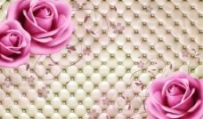 软包粉色玫瑰(不分层)图片
