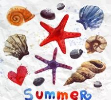 水彩海星与贝壳图片