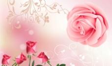 玫瑰花背景墙壁画图片