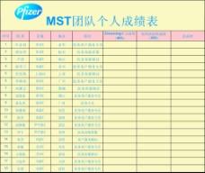 惠氏奶粉 MST团队个人成绩表