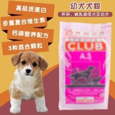 宠物犬粮 零食主图
