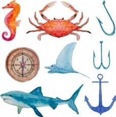 水彩绘海洋生物插画