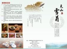 雪菊花宣传单图片