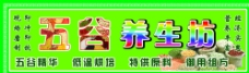 绿色背景 五谷养生图片