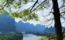 冠岩松林俯瞰漓江山水图片