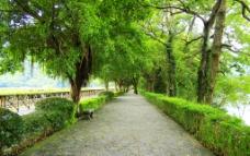 景区园林绿化道路图片