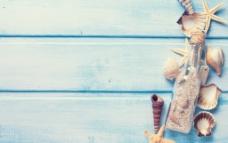 海螺贝壳木纹背景图片