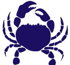 螃蟹矢量图图片