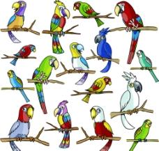卡通鹦鹉矢量素材图片