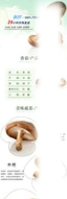 香菇美工设计图片