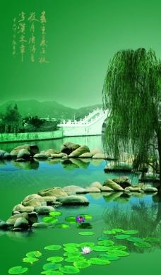 杨柳水岸风景图片