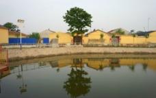 农村景色图片