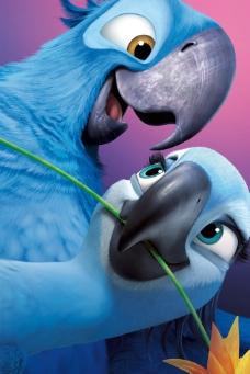金刚鹦鹉布鲁与珠儿图片