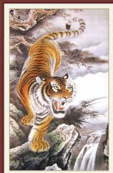 下山虎图片