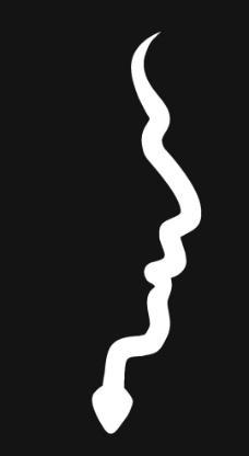 湖南大学logo图片