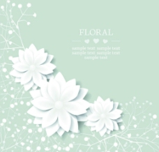 白色花纹图片